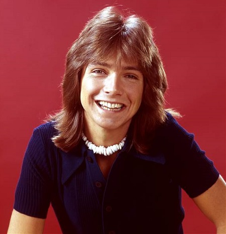 The Young David Cassidy.