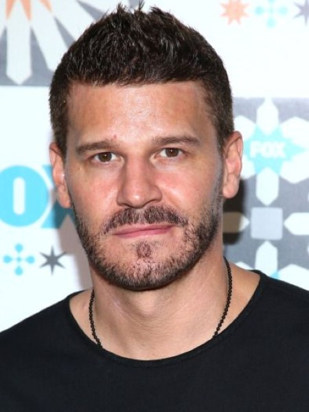 actor david boreanaz married twice  currently in a marital