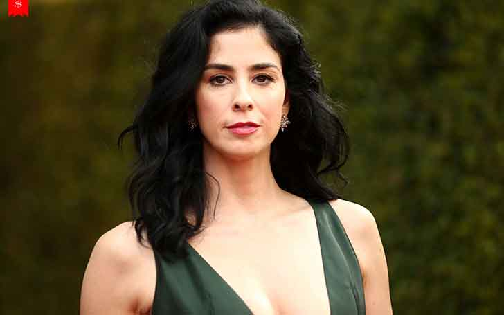 How Much Is Sarah Silverman's Net Worth? Her Income Sources And Assets