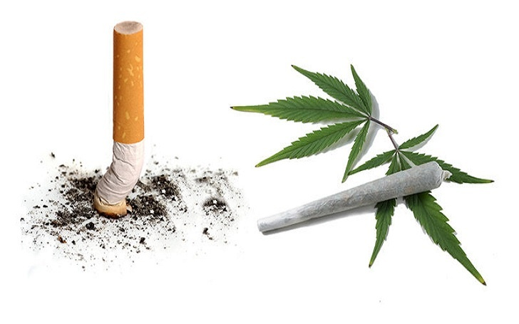 Cigarette Vs, Marijuana. Which One is More Hazardous to Health?